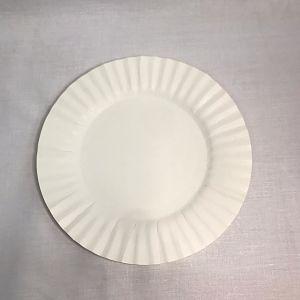 PLATO CARTON N3 (20cm)